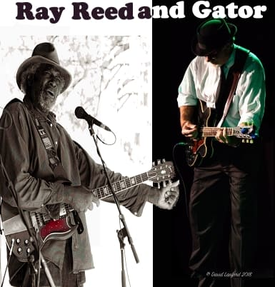ray reed and gator 3